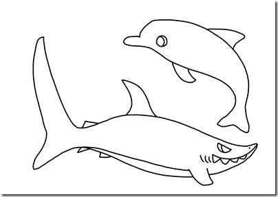 イルカとサメ