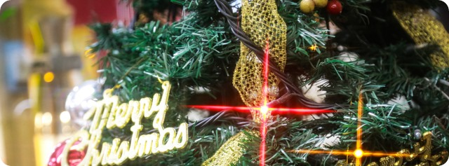 christmas0I9A4358_TP_V